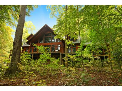 48 Camp Madron Road Buchanan, MI MLS# 15056976