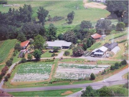 820 County Road 1669, Holly Pond, AL 35083