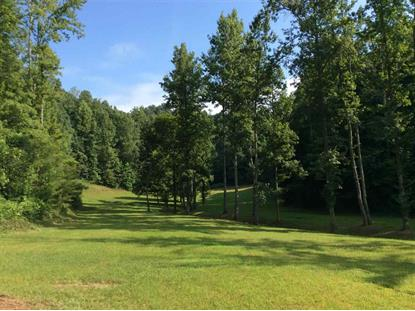 139 County Road 536 Etowah, TN MLS# 20144042