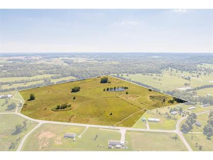 000 Carriewood Drive Lots 34A, 35A & 36A of Carriewood Estates Cecilia, KY MLS# 10030792