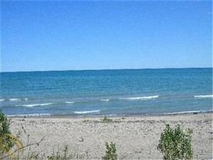0 Lakeshore  Lexington, MI MLS# 43355970