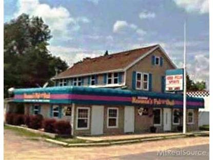 2746 Lakeshore Rd.  Lexington, MI MLS# 44123601