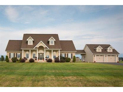 3871 LEAKSVILLE RD  Luray, VA MLS# 537339