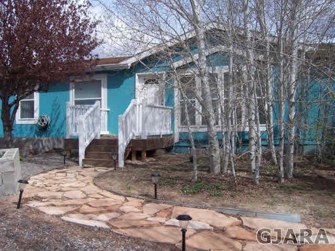 209 Homestead Ct, Whitewater, CO 81527