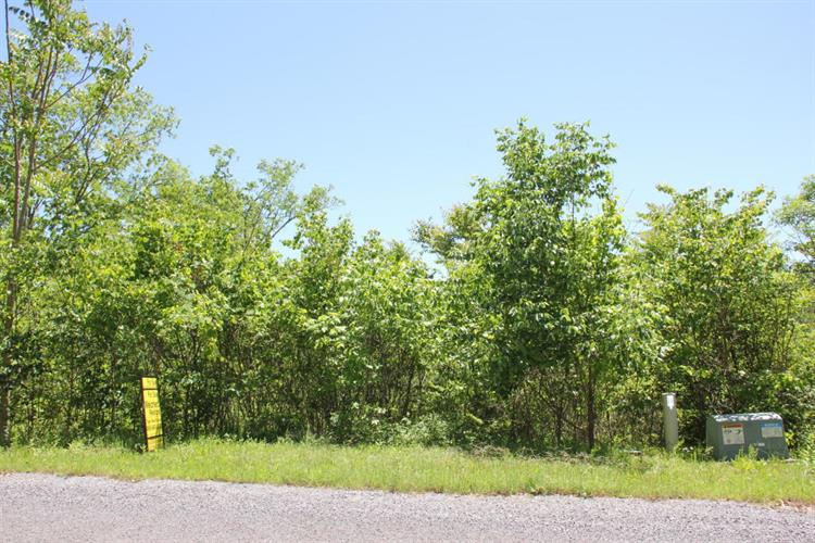 Lot #101 Stone Bridge Drive, Dandridge, TN 37725