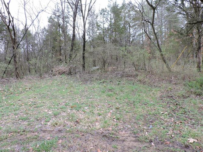 Deanbrook/Spring Creek Rd, Knoxville, TN 37920