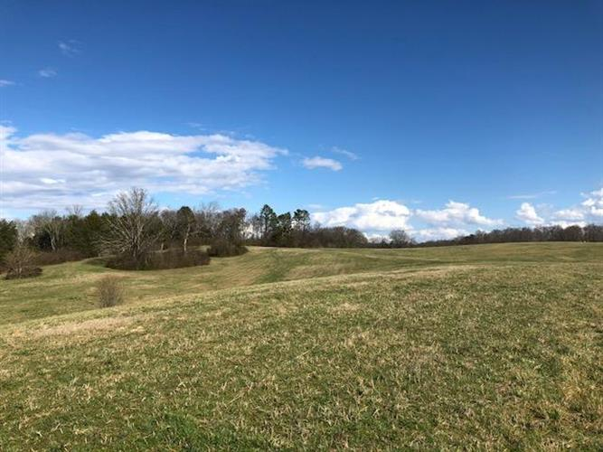 Shackleford Ln, Strawberry Plains, TN 37871