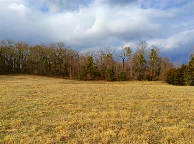 Lot 1 Star Gazing Lane, Knoxville, TN 37938 - Image 1