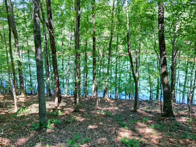 Deer Run Point, Lafollette, TN 37766