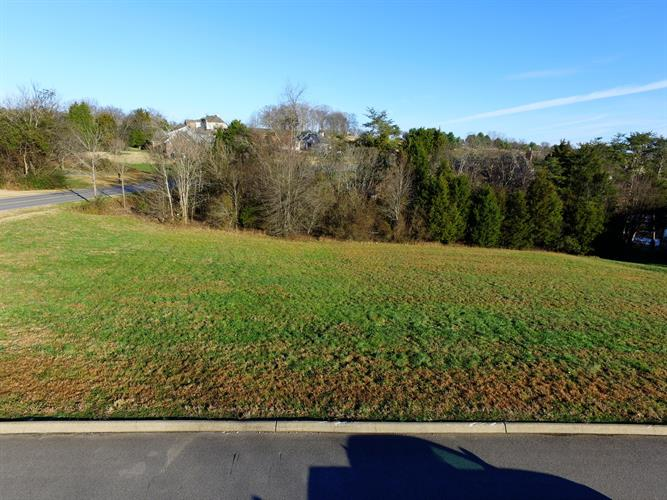 107 Rock Point Drive, Vonore, TN 37885 - Image 1