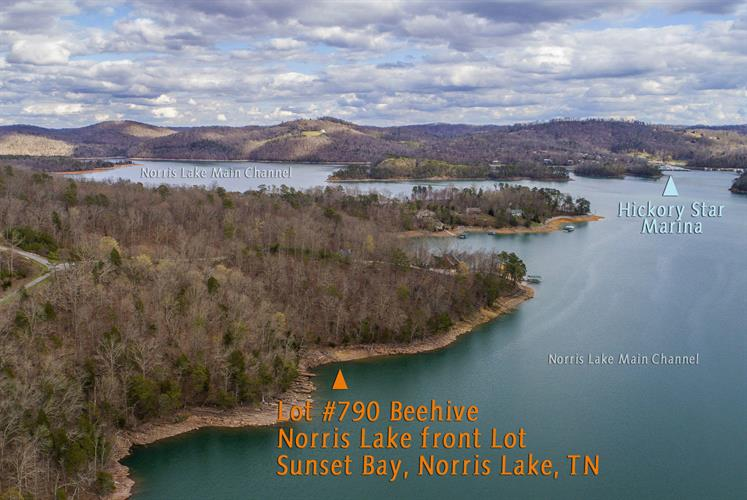 Lot 790 Beehive Lane, Sharps Chapel, TN 37866 - Image 1