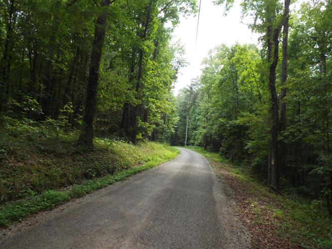 57.5 Acres Firetower Rd, Grandview, TN 37337 - Image 1