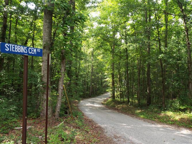 32.3 Acres Firetower Rd, Grandview, TN 37337 - Image 2