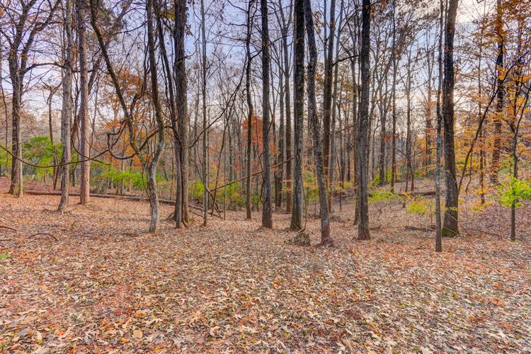 1922 Dogwood Lane, Knoxville, TN 37919 - Image 1