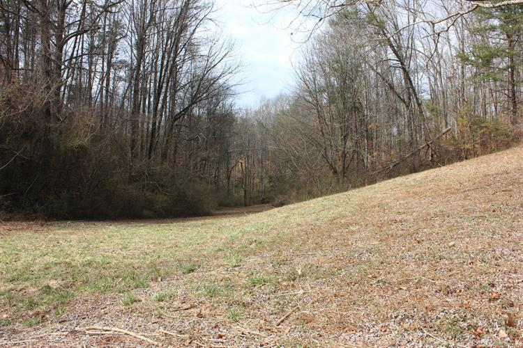 18.07 Acre Echodale & W Martin Mill, Knoxville, TN 37920 - Image 1