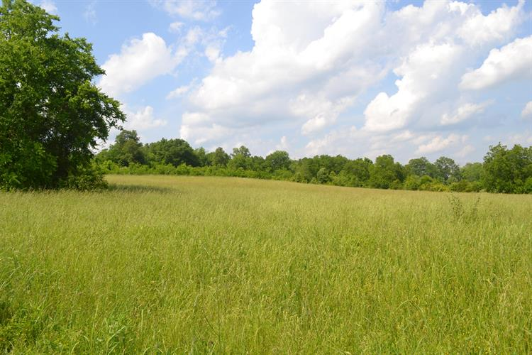 Charlie Hodges Rd, Strawberry Plains, TN 37871 - Image 1