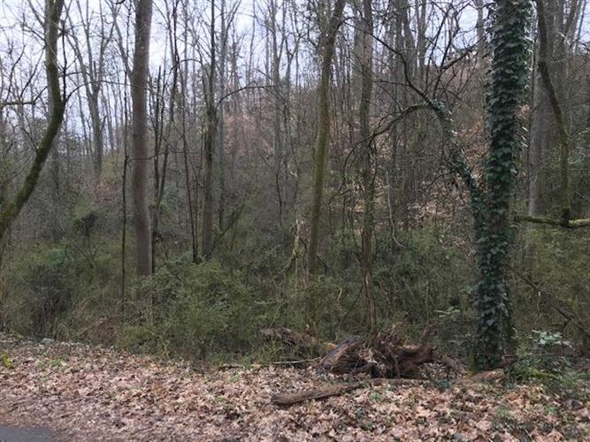4915 Wise Hills Rd, Knoxville, TN 37920 - Image 2