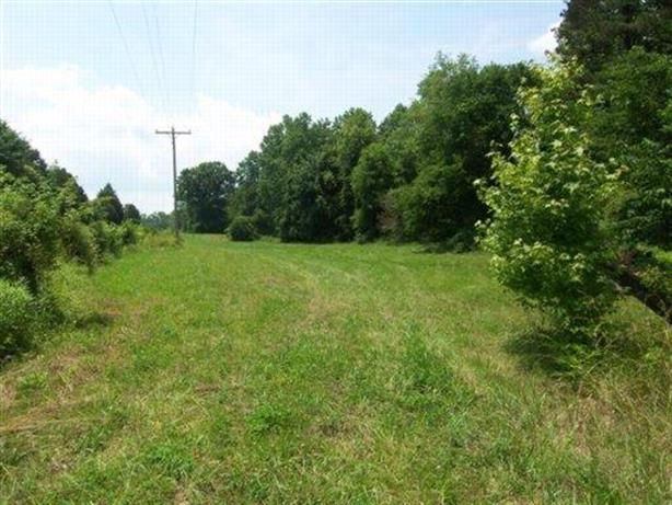 Lot 6 N Pone Valley Rd, Decatur, TN 37322