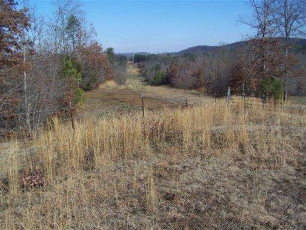 00 County Road 28, Calhoun, TN 37309
