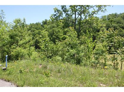 Lot #111 Tranquility Tr, Dandridge, TN