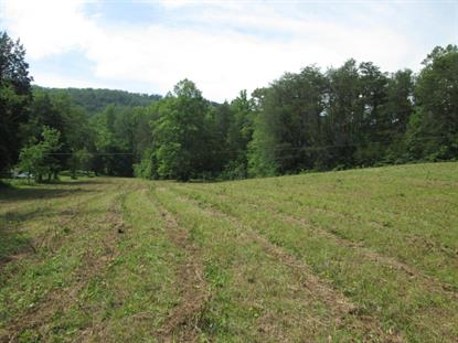 Dutch Valley Road Rd Clinton, TN MLS# 1016624