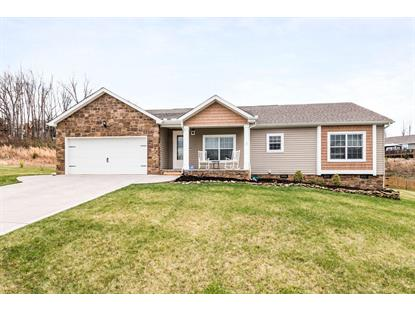223 Pebble Court, Lenoir City, TN
