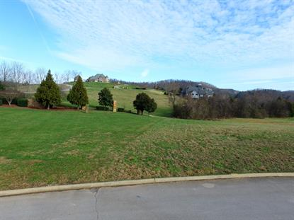 570 Rarity Bay Pkwy Vonore, TN MLS# 1040191
