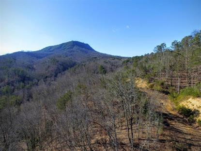 1630 Seagle Hollow Rd, Sevierville, TN