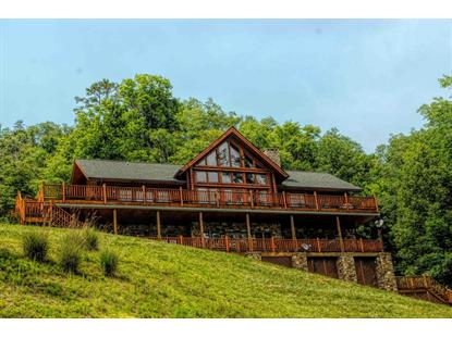 1811 Mountain Shores Rd, New Tazewell, TN