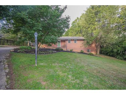 1007 S Chilhowee Drive, Knoxville, TN