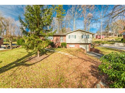 2201 Martha Berry Drive, Knoxville, TN