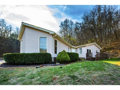 508 Lewis Lane Blaine, TN MLS# 1064039