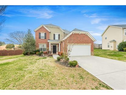 8913 Wavetree Drive, Knoxville, TN