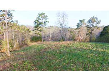 0 Long Hollow Rd Knoxville, TN MLS# 1071475