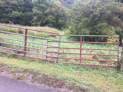 0 Lower Caney Valley Rd Tazewell, TN MLS# 1078391