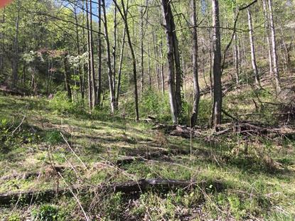 Caney Valley Rd  Tazewell, TN MLS# 1080107