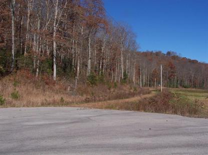 Tanner Trail  Crossville, TN MLS# 1080247