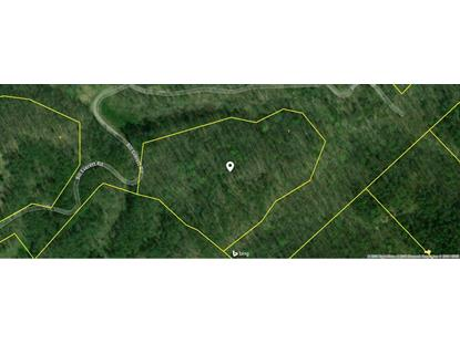 Bill Everett Rd Maryville, TN MLS# 1084046