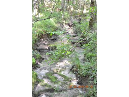 Graveyard Ridge Rd Spencer, TN MLS# 1088738