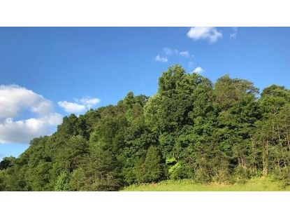 12 Ac Pickens Gap Rd Knoxville, TN MLS# 1090960