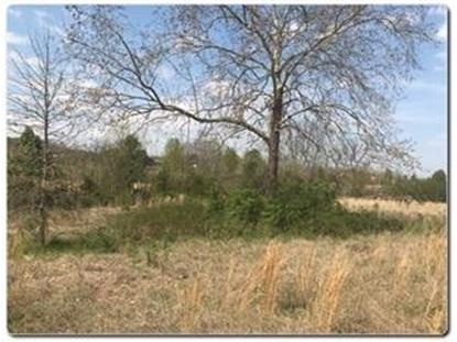 Lot 1 Old Newport Hwy  Sevierville, TN MLS# 1091001