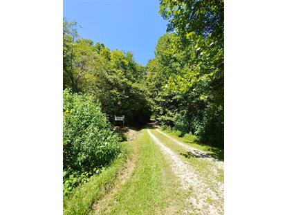 Buffalo Rd Oneida, TN MLS# 1091754