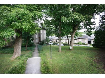 3636 Taliluna Ave Knoxville, TN MLS# 1091847
