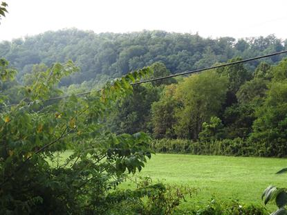 Brimstone Railroad Rd Robbins, TN MLS# 1091892