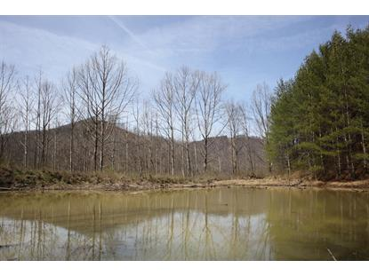 Smokey Creek  Huntsville, TN MLS# 1094317