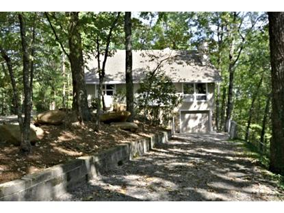 513 Adams Rd Gatlinburg, TN MLS# 1097031