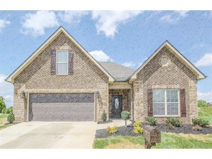 2306 Torrey Pines Drive, Maryville, TN