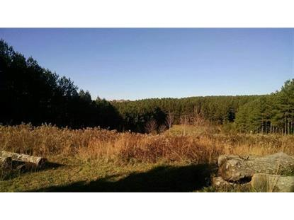 31.29 Ac Crabtree Lane  Niota, TN MLS# 1103926