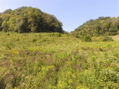 72.68 Ac. South Fork Road  Whitleyville, TN MLS# 1108922
