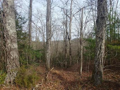 Black Creek Rd Robbins, TN MLS# 1112138